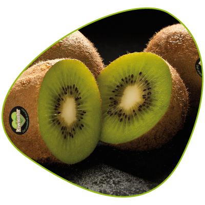 Kiwi Kiwiastur